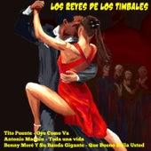 Los Reyes de los Timbales von Various Artists