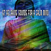 67 Relaxing Sounds For A Calm Mind de Zen Meditation and Natural White Noise and New Age Deep Massage