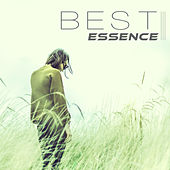 Best Essence – Good Mood, Stillness, Fall In Love, Quietly, Easy, Restfull, Quiescently de Sounds Of Nature