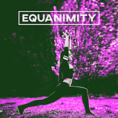 Equanimity – Calm, Peace of Mind, Stillness, Serenity, Quiet, Reflection von Soothing Sounds