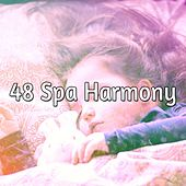 48 Spa Harmony de White Noise Babies