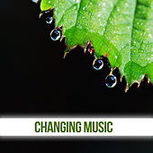 Changing Music - Different Variants, Interesting, Natural Sounds, Aqua, Billow, Sea, Smell, Breath de Nature Sounds Artists