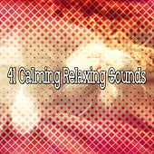41 Calming Relaxing Sounds de Water Sound Natural White Noise