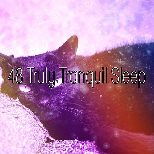 48 Truly Tranquil Sleep by Soothing White Noise for Relaxation