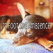 72 Foot Spa Ambience by Ocean Sounds Collection (1)