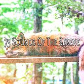 73 Sounds Of The Serene von Best Relaxing SPA Music