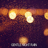 Gentle Night Rain by Rainfall (1)