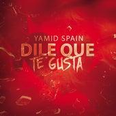 Dile Que Te Gusta de Yamid Spain