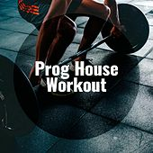 Prog House Workout by Various Artists