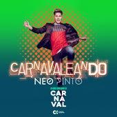 Carnavaleando van Neo Pinto