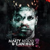 Matrix Theory II by Marty McKay & Canibus