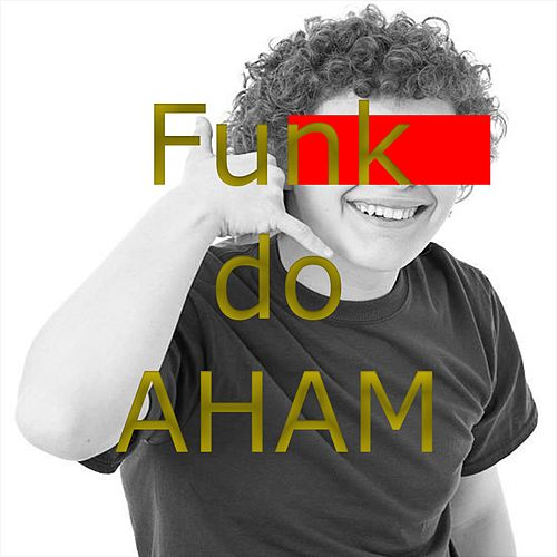 Funk do Aham by The La's