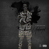 Precious Jewel (feat. Musiq Soulchild) by Papoose