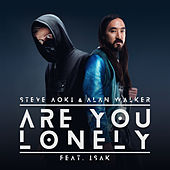 Are You Lonely di Steve Aoki