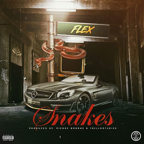 Snakes by Flex