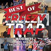 Best of - Wödhits, die ma ned kennt (16 Jahre Freezy Trap) von Freezy Trap