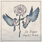 Story Of A Bluebird by Jim Bergson