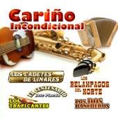 Cariño Incondicional de Various Artists