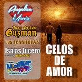 Celos De Amor by Various Artists