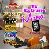 Te Extraño Mama de Various Artists