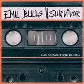Survivor by Emil Bulls