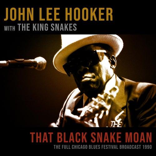 Black Snake Moan von John Lee Hooker