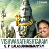 Vishwanathashtakam - Single de S.P. Balasubrahmanyam