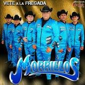 Vete a la Fregada by Morrillos Del Norte