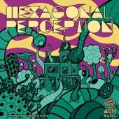 Hexagonal Perception von Various Artists