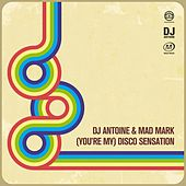 (You're My) Disco Sensation van DJ Antoine