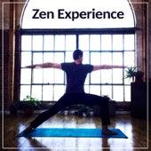 Zen Experience – Beautiful Nature Sounds, Full of Ocean Waves, Pure Meditation, Zen Garden, Profound Peace de Zen Meditation and Natural White Noise and New Age Deep Massage