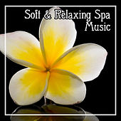 Soft & Relaxing Spa Music – Calming Sounds, New Age Relaxation, Nature Sounds for Massage, Beautiful Moments de Sounds Of Nature