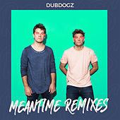 Meantime (Remixes) by Dubdogz