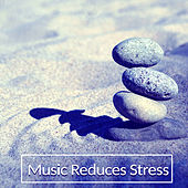 Music Reduces Stress – Nature Sounds for Meditation, Deep Sleep, Ambient Serenity, Peaceful Soul de Healing Sounds for Deep Sleep and Relaxation