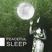 Peaceful Sleep – Nature Sounds for Relaxation, Calming Melodies Reduce Stress de Sounds Of Nature