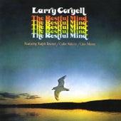 The Restful Mind von Larry Coryell