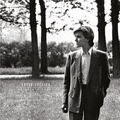 Brilliant Trees (Remastered 2003) by David Sylvian
