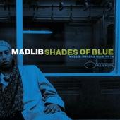 Shades Of Blue: Madlib Invades Blue Note von Madlib