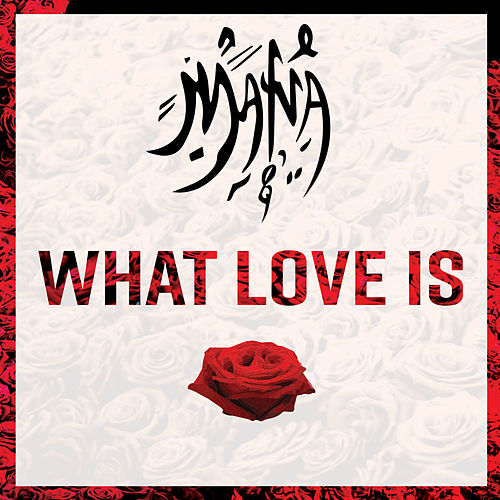 What Love Is by Mana