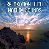 Relaxation with Nature Sounds – Peaceful Sounds, Relaxing Music, Water Waves de Sounds Of Nature