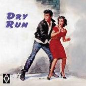 Dry Run de Various Artists