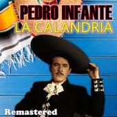 La Calandria (Remastered) by Pedro Infante