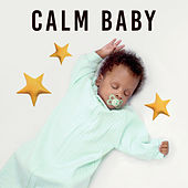 Calm Baby – Music for Sleep, Gentle Instruments at Goodnight, Lullabies de Lullaby Land