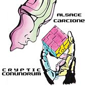 Cryptic Conundrum by Alsace Carcione