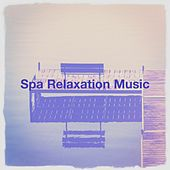 Spa relaxation music von Various Artists