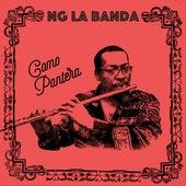 Como Pantera by NG La Banda