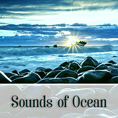 Sounds of Ocean – Calming Nature Sounds, Water Waves, Ocean Calmness de Nature Sounds Artists