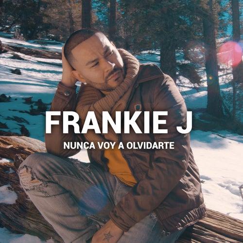 Nunca Voy A Olvidarte by Frankie J