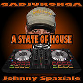 A state of house di Johnny Spaziale