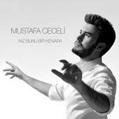 Yaz Bunu Bir Kenara by Mustafa Ceceli